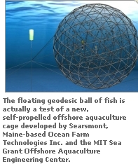 open ocean fish farming